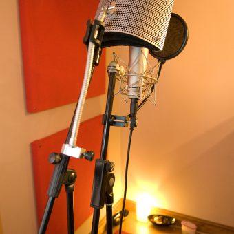 A studio microphone.