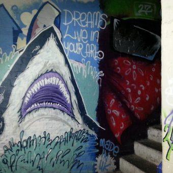 A mural graffiti design of a shark.